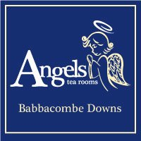 Angels at Babbacombe Logo